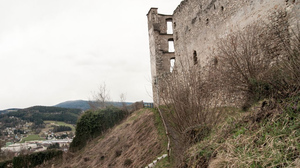 Burgruinenpanorama
